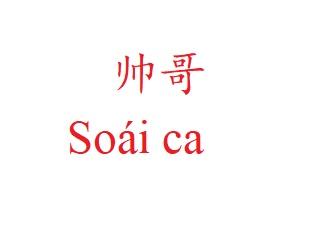 Các từ liên quan tới từ 帅