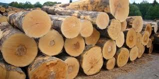 Từ vựng tiếng Trung chuyên ngành gỗ