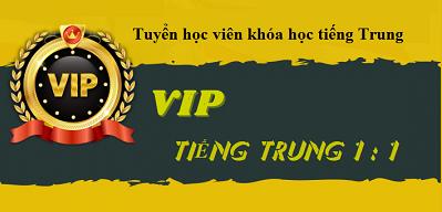 Khóa tiếng Trung VIP